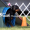 Agility ARC Nationals May 15 2017MelissaFaithKnightFaithPhotographyNV_6981