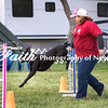 Agility ARC Nationals May 15 2017MelissaFaithKnightFaithPhotographyNV_6869