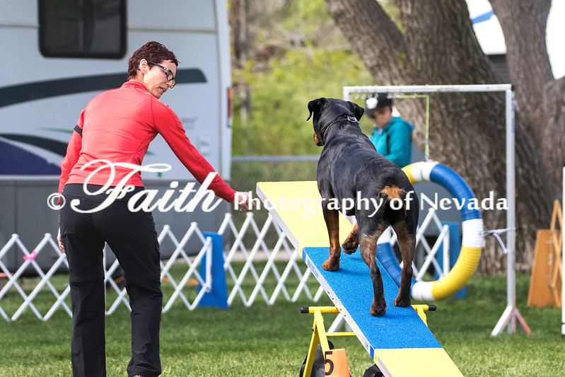 Agility ARC Nationals May 15 2017MelissaFaithKnightFaithPhotographyNV_6973