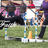 Agility ARC Nationals May 15 2017MelissaFaithKnightFaithPhotographyNV_6774