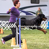 Agility ARC Nationals May 15 2017MelissaFaithKnightFaithPhotographyNV_6742