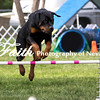 Agility ARC Nationals May 15 2017MelissaFaithKnightFaithPhotographyNV_7003