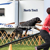 Agility ARC Nationals May 15 2017MelissaFaithKnightFaithPhotographyNV_6985