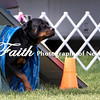 Agility ARC Nationals May 15 2017MelissaFaithKnightFaithPhotographyNV_6984
