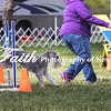 Agility ARC Nationals May 15 2017MelissaFaithKnightFaithPhotographyNV_6627