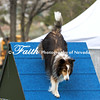 Agility ARC Nationals May 15 2017MelissaFaithKnightFaithPhotographyNV_7233