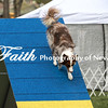 Agility ARC Nationals May 15 2017MelissaFaithKnightFaithPhotographyNV_7180