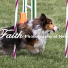 Agility ARC Nationals May 15 2017MelissaFaithKnightFaithPhotographyNV_7238