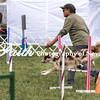 Agility ARC Nationals May 15 2017MelissaFaithKnightFaithPhotographyNV_7226