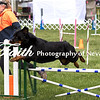 Agility ARC Nationals May 15 2017MelissaFaithKnightFaithPhotographyNV_7320