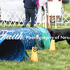 Agility ARC Nationals May 15 2017MelissaFaithKnightFaithPhotographyNV_7652