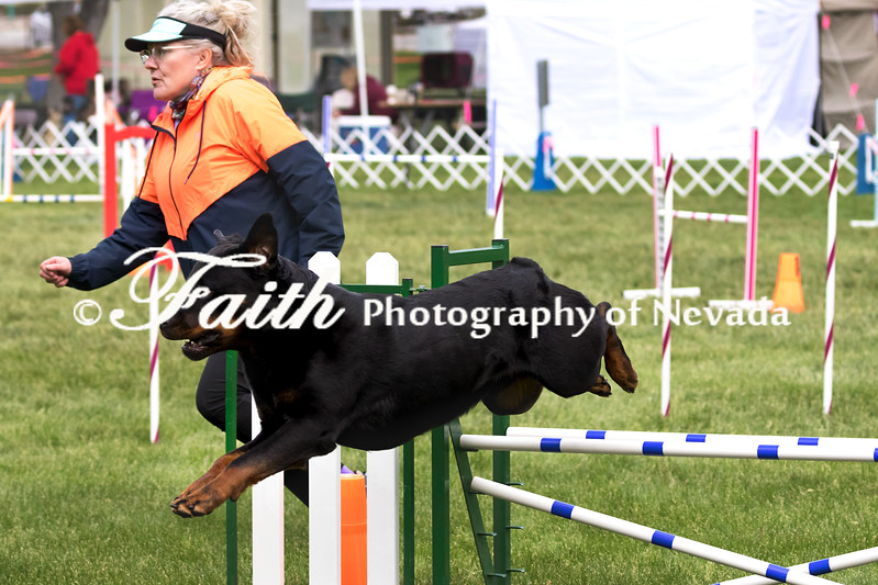Agility ARC Nationals May 15 2017MelissaFaithKnightFaithPhotographyNV_7326