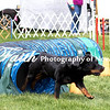 Agility ARC Nationals May 15 2017MelissaFaithKnightFaithPhotographyNV_7655