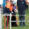 Agility ARC Nationals May 15 2017MelissaFaithKnightFaithPhotographyNV_7290