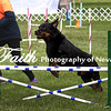 Agility ARC Nationals May 15 2017MelissaFaithKnightFaithPhotographyNV_7321