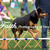 Agility ARC Nationals May 15 2017MelissaFaithKnightFaithPhotographyNV_7283