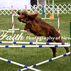 Agility ARC Nationals May 15 2017MelissaFaithKnightFaithPhotographyNV_7377