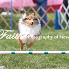 Agility ARC Nationals May 15 2017MelissaFaithKnightFaithPhotographyNV_7943