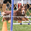 Agility ARC Nationals May 15 2017MelissaFaithKnightFaithPhotographyNV_7898
