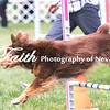 Agility ARC Nationals May 15 2017MelissaFaithKnightFaithPhotographyNV_7913