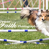 Agility ARC Nationals May 15 2017MelissaFaithKnightFaithPhotographyNV_7945