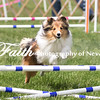 Agility ARC Nationals May 15 2017MelissaFaithKnightFaithPhotographyNV_7947