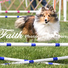 Agility ARC Nationals May 15 2017MelissaFaithKnightFaithPhotographyNV_7946