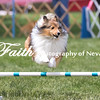 Agility ARC Nationals May 15 2017MelissaFaithKnightFaithPhotographyNV_7944