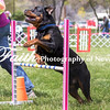 Agility ARC Nationals May 15 2017MelissaFaithKnightFaithPhotographyNV_8403