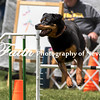 Agility ARC Nationals May 15 2017MelissaFaithKnightFaithPhotographyNV_8415