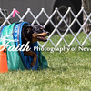 Agility ARC Nationals May 15 2017MelissaFaithKnightFaithPhotographyNV_8437