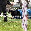 Agility ARC Nationals May 15 2017MelissaFaithKnightFaithPhotographyNV_8458