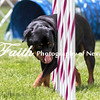 Agility ARC Nationals May 15 2017MelissaFaithKnightFaithPhotographyNV_8378