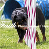 Agility ARC Nationals May 15 2017MelissaFaithKnightFaithPhotographyNV_8377