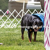 Agility ARC Nationals May 15 2017MelissaFaithKnightFaithPhotographyNV_8370