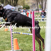 Agility ARC Nationals May 15 2017MelissaFaithKnightFaithPhotographyNV_8497