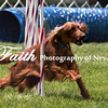 Agility ARC Nationals May 15 2017MelissaFaithKnightFaithPhotographyNV_8657