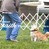 Agility ARC Nationals May 15 2017MelissaFaithKnightFaithPhotographyNV_7759
