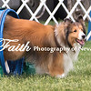 Agility ARC Nationals May 15 2017MelissaFaithKnightFaithPhotographyNV_9079