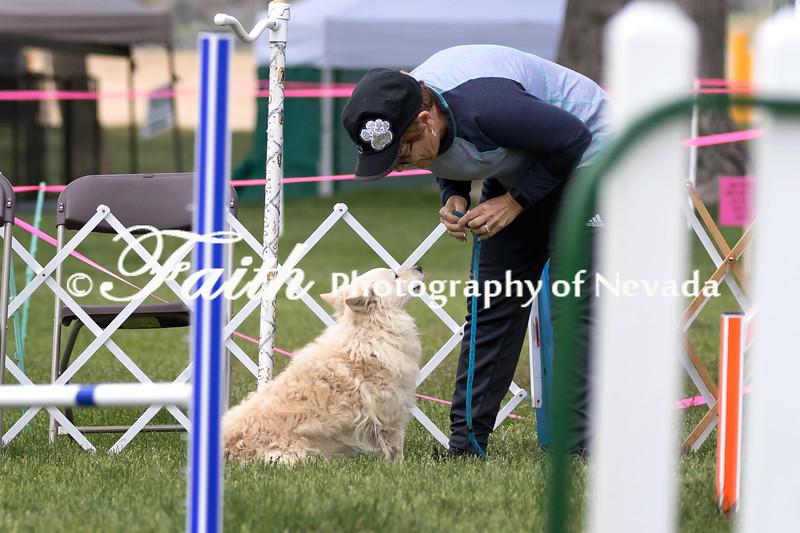 Agility ARC Nationals May 15 2017MelissaFaithKnightFaithPhotographyNV_9166
