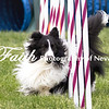 Agility ARC Nationals May 15 2017MelissaFaithKnightFaithPhotographyNV_9098