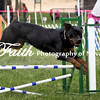 Agility ARC Nationals May 15 2017MelissaFaithKnightFaithPhotographyNV_9009