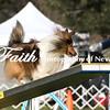 Agility ARC Nationals May 14 2017MelissaFaithKnightFaithPhotographyNV_0879