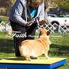 Agility ARC Nationals May 14 2017MelissaFaithKnightFaithPhotographyNV_2506