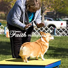 Agility ARC Nationals May 14 2017MelissaFaithKnightFaithPhotographyNV_2508