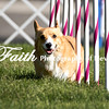 Agility ARC Nationals May 14 2017MelissaFaithKnightFaithPhotographyNV_2485