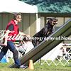 8x12 Agility ARC Nationals May 14 2017MelissaFaithKnightFaithPhotographyNV_2638
