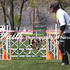 Agility ARC Nationals May 14 2017MelissaFaithKnightFaithPhotographyNV_3840