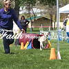 Agility ARC Nationals May 14 2017MelissaFaithKnightFaithPhotographyNV_3921