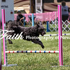 Agility ARC Nationals May 14 2017MelissaFaithKnightFaithPhotographyNV_4040